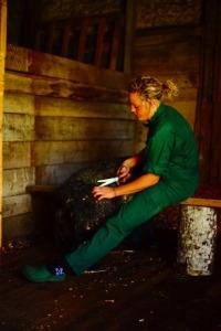 Lamba pügamine võib olla ka lõõgastav käsitööline harjutus.